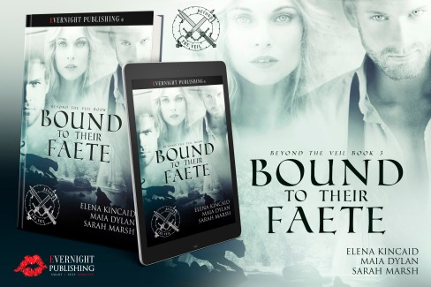 boundtotheirfaete-evernightpublishing-jan2017-ereader